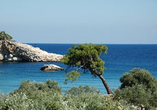 Thassos. Nature in Thassos, popular place for holiday in Greece Royalty Free Stock Images
