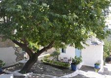 Thassos, Sierpień 23th: Tradycyjny domowy podwórze w Theologos wiosce od Thassos wyspy w Grecja obraz royalty free