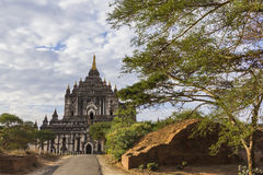 Thatbyinnyu寺庙, Bagan缅甸 图库摄影