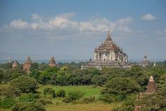 Thatbyinnyu-Pagode in Bagan, Myanmar Stockbilder