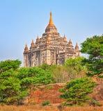 Thatbyinnyu Temple in Bagan. Stock Photos