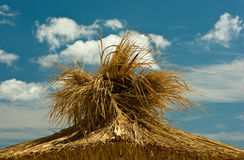 Thatch. Umbrella on a background of white clouds Stock Image