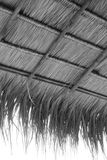 Thatch Stock Image