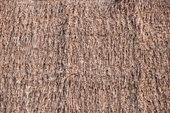 Thatch background Stock Photography