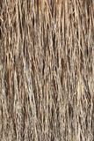Thatch background Stock Photos