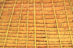 Thatch background Royalty Free Stock Images