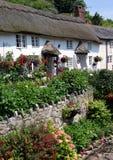 Thatch del Devon Fotografie Stock Libere da Diritti