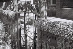 Thatch fence and gate