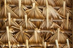 Thatch in Latin America Royalty Free Stock Photo