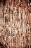 Thatch roof background, hay or dry grass background Royalty Free Stock Photo