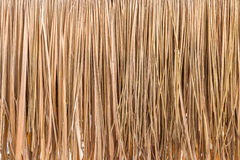 Thatch roof background, hay or dry grass background.  royalty free stock photos