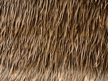 Thatch roof background. Thatch roof made from hay or dry grass stock image