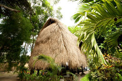 Thatch roof bungalow at tropical resort Stock Photos