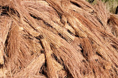 Thatch roof grass Stock Image