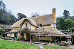 Thatch Roof Repair Royalty Free Stock Photography