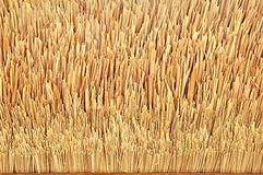 Thatch roof texture. Tip of thatch roof texture stock photo