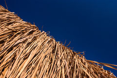 Thatch roof Stock Photography