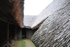 thatched крыша Взгляд от двора Стоковые Изображения RF