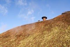 thatched крыша дома Стоковая Фотография