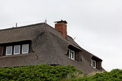 thatched крыша дома Стоковое фото RF