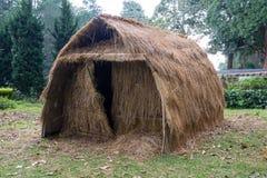 thatched крыша дома Стоковые Фотографии RF
