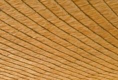 Thatched крыша. Стоковые Фотографии RF