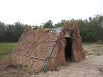 thatched крыша Стоковые Фото