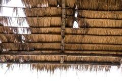 thatched крыша Стоковые Фотографии RF