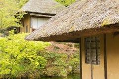 thatched дом Стоковое Изображение RF