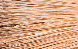 Thatched Stock Photography
