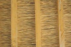 thatched bakgrundstak Arkivbild