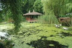 Thatched cottage. The thatched cottage in a park najing china Stock Photo