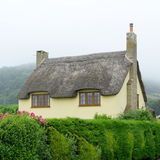 Thatched cottage. Beautiful old thatched cottage in Axmouth, Devon Royalty Free Stock Images