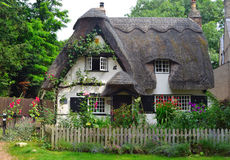 Thatched cottage with white walls and colourful garden. Royalty Free Stock Photos