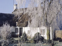 Thatched cottage in winter Royalty Free Stock Photography