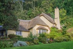 A thatched cottage in woodland in the village of Selworthy. A thatched cottage surrounded by woodland in the village of Selworthy in Somerset, lit by autumn stock image