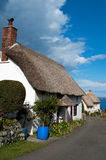 Church Cove Cottages Cornwall. Thatched cottages at Church Cove on the Lizard Peninsula in Cornwall Stock Photos