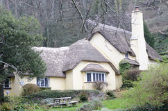 Thatched Cottages Stock Image