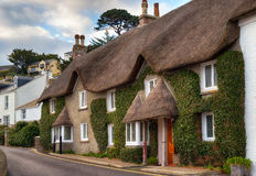 Thatched Cottages. Pretty thatched cottages at the seaside town of St Mawes near Falmouth in Cornwall stock image