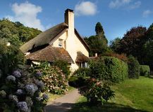 Thatched English Cottages Stock Image