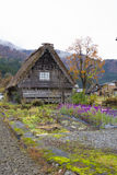 Thatched farm house Stock Images