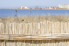 Thatched fence on a salt lake Stock Photos