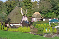 Thatched Houses. Thatched cottages in Cockington village stock photo