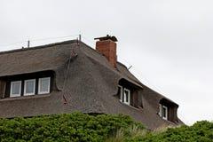 thatched hustak Royaltyfri Foto