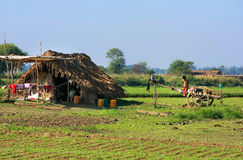 Thatched hut in a farm field, Amarapura, Myanmar Royalty Free Stock Photos