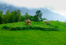 Thatched hut Royalty Free Stock Photos