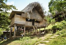 Thatched hut - Native indian home at the Embera Indian village Stock Images