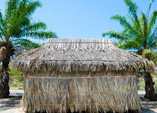 Thatched hut Royalty Free Stock Image