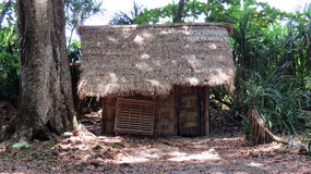 Thatched hut. A small hut with thatched roof by the side of a tree Stock Photos