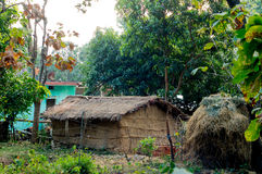 Thatched hut surrounded by trees Royalty Free Stock Photo